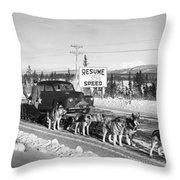 Alaska: Dog Sled, C1950 Throw Pillow