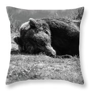 Alaska Grizzly - Do Not Disturb Grayscale Throw Pillow
