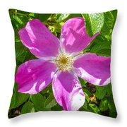 Alaska Rose Throw Pillow