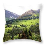 Alaska Scenery II Throw Pillow