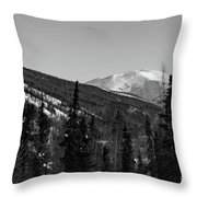 Alaska Wilderness Bw Throw Pillow