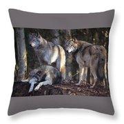 Alaska Wolf Trio Throw Pillow