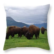 Alaska Wood Bison Throw Pillow