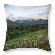 Alaskan Dandelions  Throw Pillow