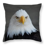 Bald Eagle Ketchikan Alaska Throw Pillow