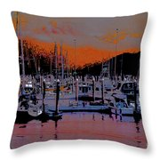 Alaskan Harbor 8 Throw Pillow