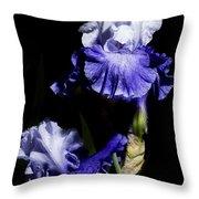 Alaskan Seas Iris  Throw Pillow
