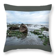 Alaskan Shoreline Throw Pillow