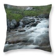 Alaskan Stream Throw Pillow