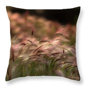 Alaskan  Summer Foxtail Throw Pillow
