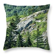 Alaskan Wilderness Throw Pillow