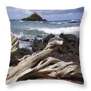 Alau Islet, Drift Wood Throw Pillow
