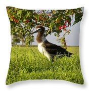 Albatross 1 Throw Pillow