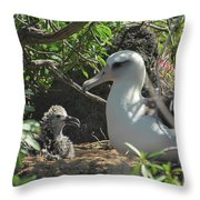 Albatross Mom And Baby Throw Pillow