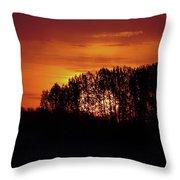 Alberta Sunset Throw Pillow