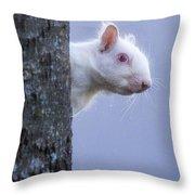 Albino Squirrel Throw Pillow