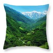 Alborz Green Throw Pillow