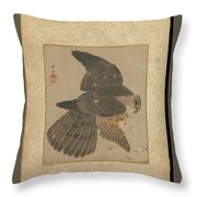 Album Of Hawks And Calligraphy Throw Pillow