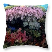 Alcyonarian Coral - Fiji Throw Pillow