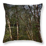 Alders At Camp 18 Throw Pillow