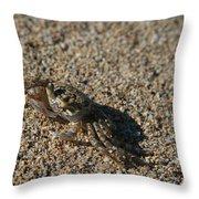 Ale Eke Ohiki Kuau Sand Crab Throw Pillow