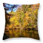 Alexandria Creek In The Fall Throw Pillow