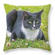 Alfie On The Alert Throw Pillow