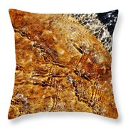 Alfred Caldwell Lily Pool Springs Throw Pillow