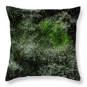 Algae Underneath Frozen Water Throw Pillow