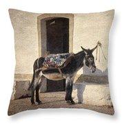 Algarve Donkey Throw Pillow