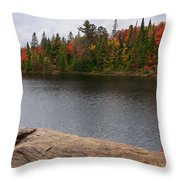 Algonquin Provincial Park Ontario Throw Pillow