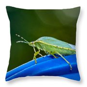 Alice The Stink Bug 2 Throw Pillow