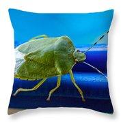 Alice The Stink Bug 3 Throw Pillow