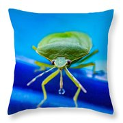 Alice The Stink Bug 4 Throw Pillow