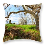 Alice's Wonderland Throw Pillow