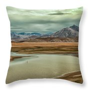 Alien Planet Throw Pillow