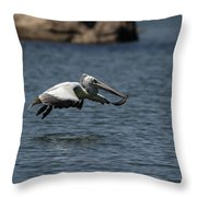 Aligning For The Dive Throw Pillow