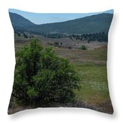 Alive And Dead Throw Pillow