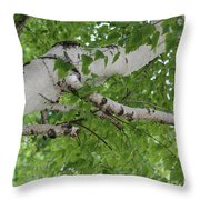 All About Trees Throw Pillow