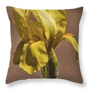 All About Yellow Throw Pillow