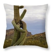 All Arms Throw Pillow