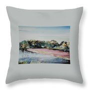 All Bogged Down Throw Pillow