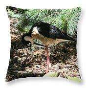 All Clear - Bird Looking Under Legs Throw Pillow