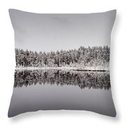 All Colors Of Gray. Panorama Throw Pillow
