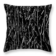 All Cracked Up Throw Pillow