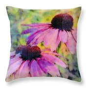 All Delights Are Vain Throw Pillow