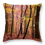 All Fall Throw Pillow