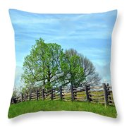 All Fenced In Along The Blue Ridge Parkway Throw Pillow