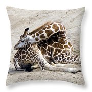 All Folded Up Throw Pillow