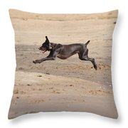 All Four Off The Ground Throw Pillow
